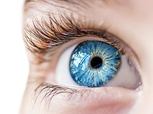 Fairlawn Eye Care preview